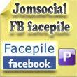 Facebook Facepile