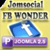 Facebook Wonder