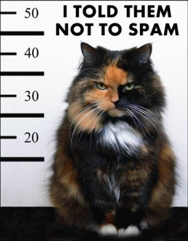 New registrations on the Forum No-spam-cat