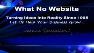 What No Website, Turning Ideas Into Reality Since 1995